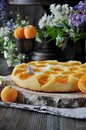 A pie with fresh apricots Royalty Free Stock Photo