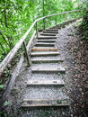 Wooden steps at a footpath in a forest Stock Images