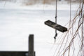 Wooden swing on rope homemade seat near lake in the wintertime Royalty Free Stock Photo