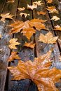 Wooden table with autumn leaves Stock Image