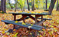 Wooden table and bench Stock Images