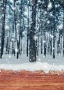Wooden table with snow place and Christmas background with fir trees and blurred background of winter. Royalty Free Stock Photo