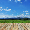 The wooden terrace farms for background Royalty Free Stock Images