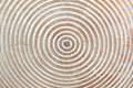 Wooden texture with circles Royalty Free Stock Photo