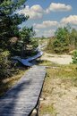 Wooden paths in the dunes near Palanga Royalty Free Stock Photo