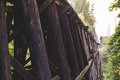 Wooden train bridge or trestle in lush forest area Royalty Free Stock Photo