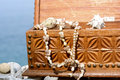 Wooden treasure chest with shells and nickles Royalty Free Stock Photography