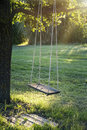 Wooden vintage garden swing old hanging from a large tree on green grass background in golden evening sunlight Stock Photo