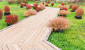 Wooden walkway in the garden autumn Royalty Free Stock Images