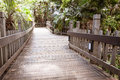 Wooden walkway manmade in a tropical forest setting Royalty Free Stock Photos