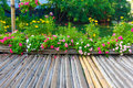 Wooden walkway in park bamboo the Stock Images