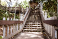 Wooden walkway stairs manmade in a tropical forest setting Stock Image