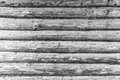 Wooden wall made from logs. Wood black white texture background. Royalty Free Stock Photo