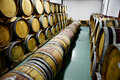 Wooden wine barrels in a wine cellar Royalty Free Stock Photo