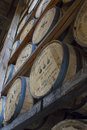 Woodford reserve rik house versailles ky usa october oak barrels aging in of bourbon distillery Royalty Free Stock Photography