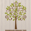 Woodgrain organic tree with background woddgrain pattern Stock Images
