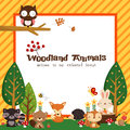 Woodland Animal Card