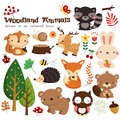 Woodland animal vector set Royalty Free Stock Photo