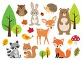 Cute Woodland Forest Animal Vector Illustration Set Royalty Free Stock Photo