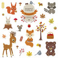 Woodland animals in autumn time. Royalty Free Stock Photo