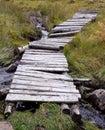 Woodland bridge Royalty Free Stock Photo
