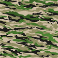 Woodland Camouflage Background in green. Vector illustration Royalty Free Stock Photo
