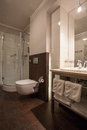 Woodland hotel contemporary bathroom interior shower Royalty Free Stock Photos