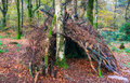 Woodland survival shelter a bivouac in the woods made from sticks and branches Stock Images
