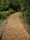 Woodland woodchip path edged ornamental running through trees Stock Photos