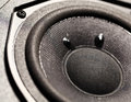 Woofer close up of a audio Royalty Free Stock Image
