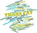 Word cloud for Trans fat Royalty Free Stock Photo