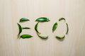 Word Eco made with leaves of ruscus flower at wooden rustic wall background. Still life, eco style, top view. Royalty Free Stock Photo