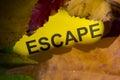 Word escape