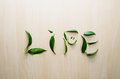 Word Life emotion smile made with leaves of ruscus flower at wooden rustic wall background. Still life, eco style, top Royalty Free Stock Photo
