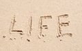 Word of life on the sand Royalty Free Stock Photo