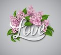 Word Love with flowers. Vector illustration Royalty Free Stock Photo