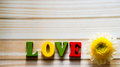 The word `Love` laid out with wooden letters and 1 chamomile on the table.