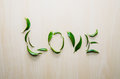 Word Love made with leaves of ruscus flower at wooden rustic wall background. Still life, eco style, top view. Royalty Free Stock Photo