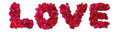 Word of love made from red rose petals isolated on white Royalty Free Stock Photos