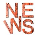 The word `news` written with letters in shape of red pine bark - Useful for natural themes