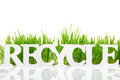 Word Recycle With Fresh Grass