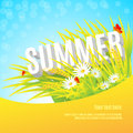 Word Summer in grass Royalty Free Stock Photo