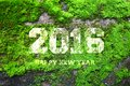 The word 2016 written in old gray stone wall with green moss Royalty Free Stock Photo