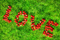Word & x22;love& x22; made of strawberries on a green lawn