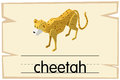 Wordcard template for word cheetah