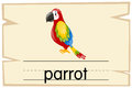 Wordcard template for word parrot