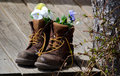 Work boots and flowers an old pair of hold an arrangement of on a rustic front porch Royalty Free Stock Images