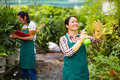 Work in the greenhouse happy asian women spraying water on plants with mature men on background Royalty Free Stock Photography