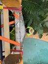 Work ladder securely fastened