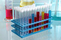 Workbench chemistry laboratory with test tubes in rack Royalty Free Stock Photo
